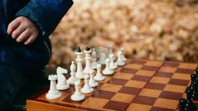 Primer tirado de madera del ajedrez agujereada con la disposición completa metrajes