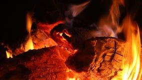 Primer tirado del fuego ardiente acogedor caliente en una chimenea almacen de metraje de vídeo