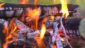 Primer tirado del fuego ardiente acogedor caliente en una chimenea del ladrillo C?mara lenta HD almacen de video