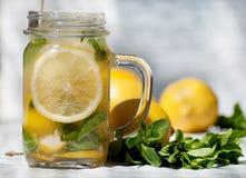 Primer tirado del mandíbula de la limonada Imagen de archivo libre de regalías