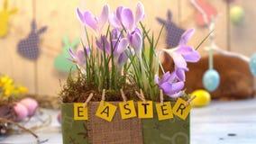 Primer tradicional de la caja de la flor del concepto del símbolo del conejo de la celebración mullida de pascua metrajes
