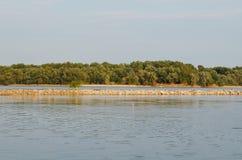 Primer tranquilo del río Danubio Fotografía de archivo libre de regalías