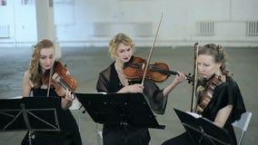 Primer Tres violinistas de músico que tocan el violín almacen de metraje de vídeo