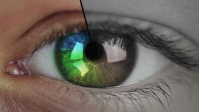 Primer y cuenta descendiente del ojo
