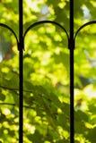 Primer y jardín de las puertas del metal, verticales Imágenes de archivo libres de regalías