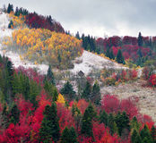 Primera caída de la nieve en el pueblo cárpato Fotografía de archivo