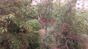 Primera lluvia en Delhi la India fotografía de archivo libre de regalías