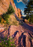Primera luz en rastro rojo de las rocas Fotos de archivo