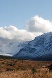 Primera nieve Foto de archivo libre de regalías