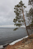 Primera nieve al lado del lago Imagen de archivo