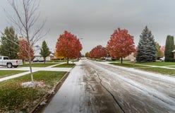 Primera nieve del invierno en el cercano oeste Fotografía de archivo