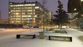 Primera nieve en diciembre de 2018 foto de archivo libre de regalías
