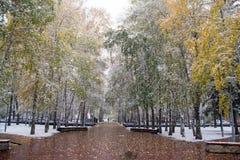 Primera nieve en el parque de la ciudad Imagen de archivo