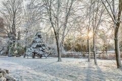 Primera nieve en el parque de la ciudad con un callejón que camina soleado imagenes de archivo