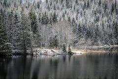 Primera nieve en el río Imagen de archivo