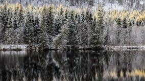Primera nieve en el río Imagen de archivo libre de regalías