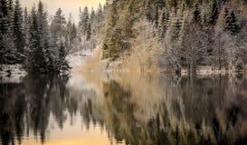 Primera nieve en el río Foto de archivo libre de regalías