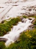 Primera nieve en la región turística de las montañas Prado verde fresco con la corriente de los rápidos Picos de las montañas de  Fotografía de archivo