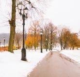 Primera nieve en parque del otoño Imágenes de archivo libres de regalías