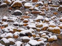 Primera nieve Fondo Foto de archivo libre de regalías
