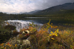 Primera respiración del otoño Imagenes de archivo