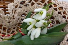 Primeras flores Foto de archivo libre de regalías