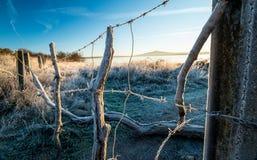 Primeras heladas en el campo El invierno está viniendo Fotos de archivo libres de regalías