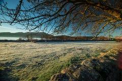 Primeras heladas en el campo El invierno está viniendo Fotografía de archivo