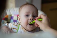 Primero la alimentación del bebé de la cuchara La mamá alimenta la comida tajada homogeneizada bebé con una cuchara Cuidado de ni imagen de archivo libre de regalías
