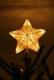 Primeros del árbol de navidad de la estrella Fotografía de archivo libre de regalías