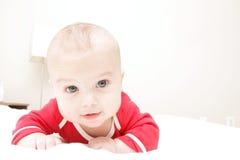 Primi punti del bambino: Strisciare Immagini Stock