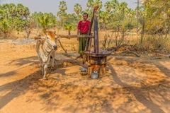 Primitieve molen voor het drukken van palmolie Stock Afbeeldingen