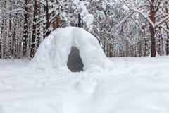 primitieve sneeuwschuilplaats in een wild de winterbos royalty-vrije stock fotografie