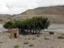 Primitiv lantlig toalett i Himalayas Arkivbild