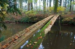 Primitive bridge Stock Photography