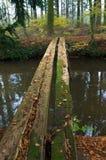 Primitive bridge Stock Image