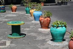 Colored pots with plants Stock Photography