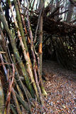 Primitive Log Shelter Illinois Royalty Free Stock Photos