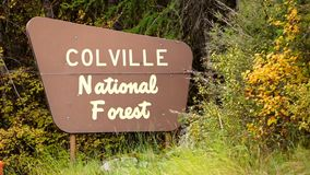 The Outdoor Wooden Roadside Sign Says Colville National Forest stock video