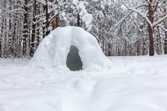 primitive snow shelter in a wild winter forest royalty free stock photography