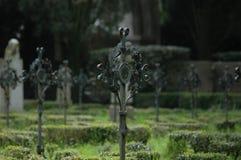 Primo cimitero di guerra mondiale Fotografie Stock