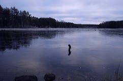 Primo ghiaccio su un lago fotografia stock libera da diritti