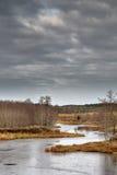 Primo ghiaccio sul lago Fotografie Stock