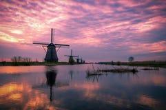 Primo mattino in Kinderdijk, Olanda Fotografie Stock Libere da Diritti