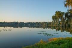 Primo mattino su un lago in Florida Fotografia Stock