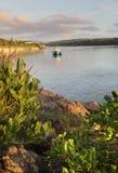 Primo mattino sul fiume di Minamurra immagini stock libere da diritti