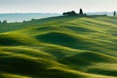 Primo mattino sulla campagna vicino a Pienza, Toscana, Immagine Stock Libera da Diritti