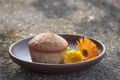 Primo piano al sole del muffin e del fiore del tagete Fotografie Stock