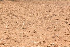 Primo piano arato del campo dell'azienda agricola Fotografie Stock Libere da Diritti