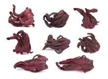 Primo piano asciutto rosso del tè dell'ibisco, isolato su fondo bianco collage Immagini Stock Libere da Diritti
